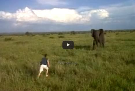 Αστεία video: Θεοπάλαβος τα βάζει με Ελέφαντα