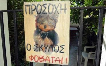 ΠΡΟΣΟΧΗ: Ο Σκύλος Φοβάται