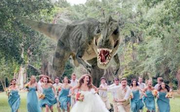 Αστεία Βίντεο: Ευτράπελα σε Γάμους... Άντε και στα δικά σας!
