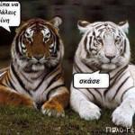 Τα Ανεκδοτάκια της Ημέρας & Αστείες Ατάκες